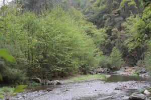 Zempoala: el río de la pasión geológica