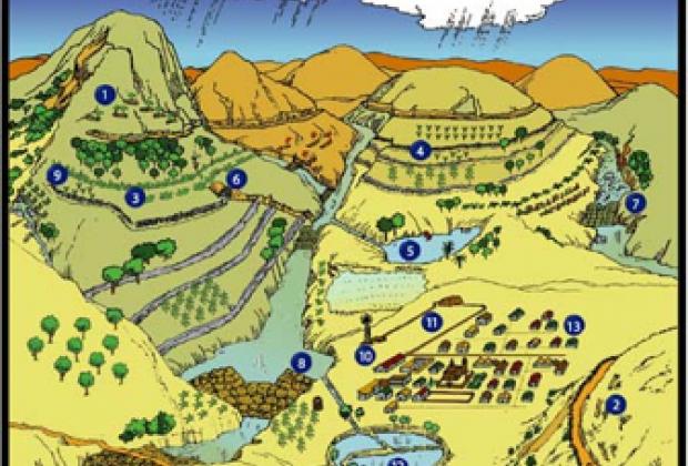 Agua para Siempre y Alternativas: una política estratégica desde la sociedad civil