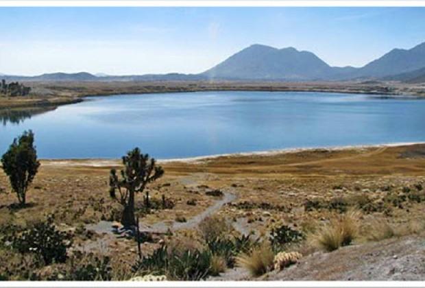 Amenazas a la biodiversidad en el Estado de Puebla: un recuento según la CONABIO