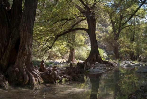 El Atoyac en la cañada de San Agustín: el río que renace por la serranía del Tentzo