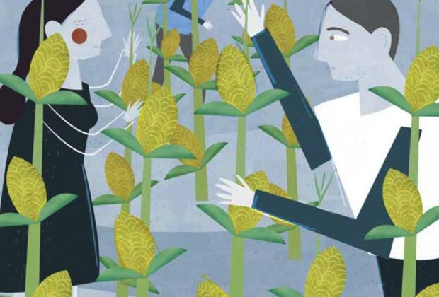 La batalla por el maíz