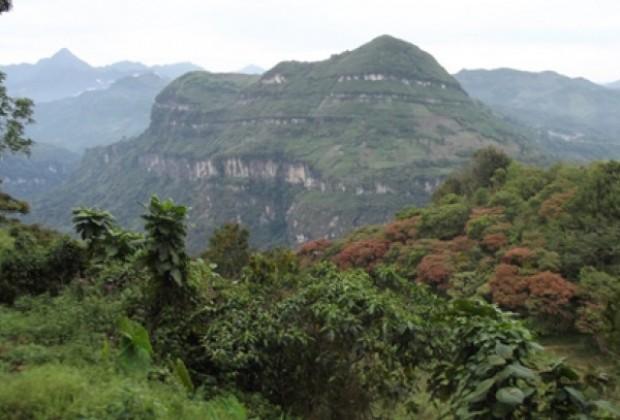 Manifiesto en defensa de la Sierra, la Huasteca y el Totonacapan