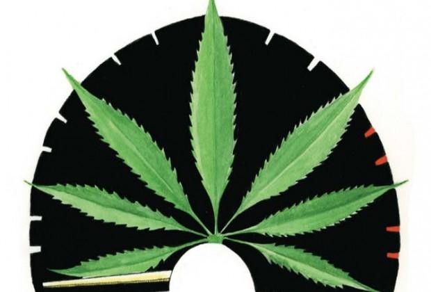 Marihuana y Salud: para entender la decisión de la Suprema Corte en la ruta a la despenalización