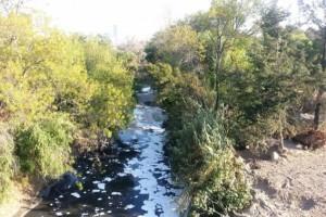 Cada quien tiene un río cerca: ¡Atoyac!