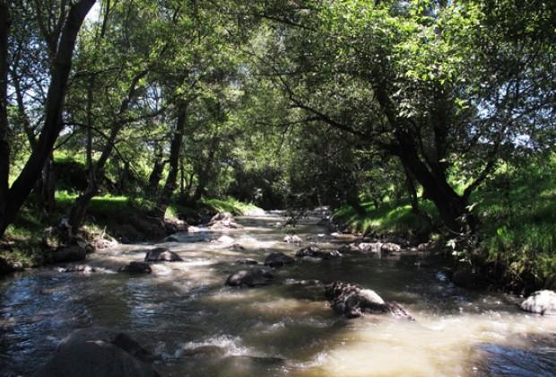 Dándole la cara al río Atoyac/Vida y milagros