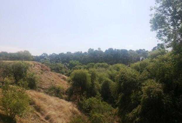 La Comisión Nacional del Agua concesiona los ríos poblanos para espectaculares