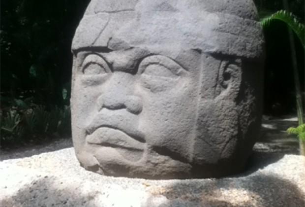 Contra la derrota de la selva la memoria olmeca