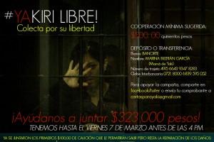 Violencia contra las mujeres. Yaquiri libre: colecta por su libertad