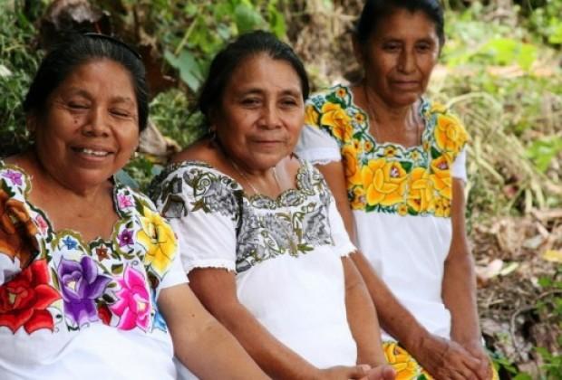 También de la Suprema Corte: amparo contra Monsanto en Yucatán